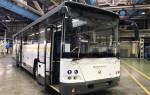 Автобусный парк Воронежа пополнился новенькими ЛиАЗами