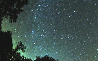 Воронежцы смогут увидеть звездопад Персеиды