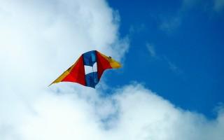 В Воронеже пройдёт фестиваль воздушных змеев