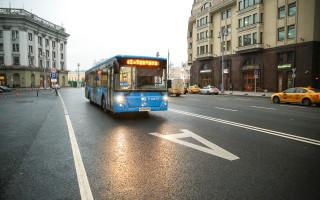 В Воронеже будет единый оператор пассажирских перевозок
