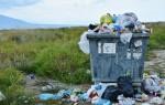 Более трети воронежцев поддерживают идею раздельного сбора мусора