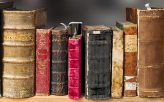 В воронежских парках и скверах заработают летние читальни