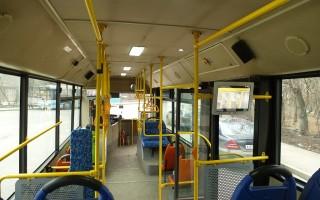 Воронеж пополняется новыми автобусами