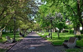 В Воронеже благоустроят сквер и два парка