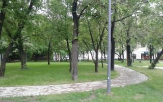 В Воронеже благоустроят сквер «Музыкальный»