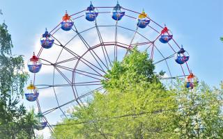 В воронежском парке «Дельфин» будут скейт-парк и колесо обозрения