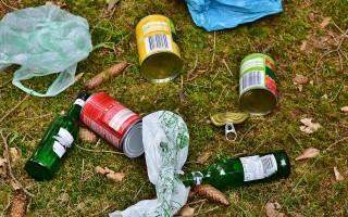 Воронежский «Экодвор» примет от горожан ненужные пластик, банки и макулатуру