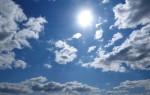 Начало лета 2019 года в Воронеже стало одним из самых жарких за последние 88 лет