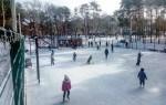 Ледовые катки в Воронеже: платные и бесплатные, крытые и открытые
