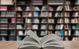 В Воронеже пройдёт фестиваль детской и юношеской литературы «Читай-Болтай»