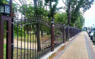 Воронежцам предложили решить судьбу Бринкманского сада