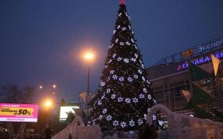 В Воронеже начали установку новогодней ёлки