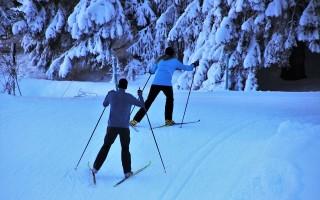Вместо «Лыжни России» в Воронеже проведут забег