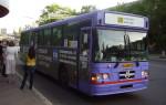В Воронеже планируется масштабное обновление автобусного парка