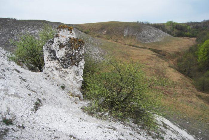 Меловой останец у горы Шадрище