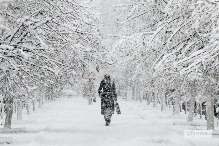 Снег в Воронеже