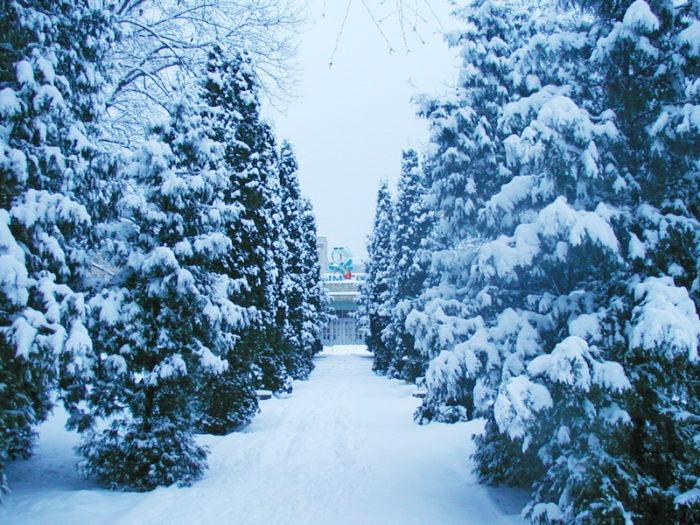 Санаторий зимой