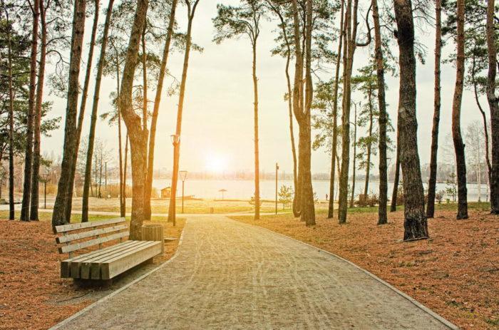 Аллея в парке Алые паруса